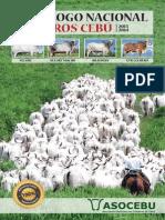 47_catalogo de Toros