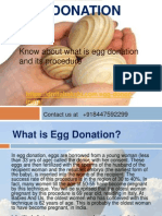 Best Egg Donation clinic in India