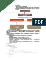 Tema 4 La Empresa y Sus Funciones
