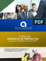 Brochure CURSO Pmi