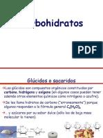 carbohidratos 2013