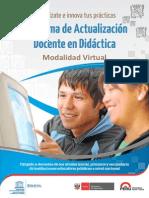 Programa Actualizacion Docente en Didactica Modalidad Virtual