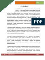 Historia de La Albañielra