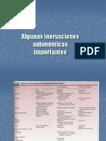 Algunas inervaciones autonómicas.ppt