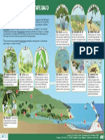 Pacific High Island Environments Handout - Yapese Language