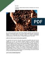 Diez mitos y verdades del café.docx