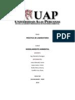 Informe Practica Modelamiento Ambiental