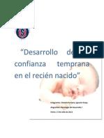 Plan Estimulacion Desarrollo