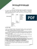 FICHA INFORMATIVA - Origm e Evolução Do Port.