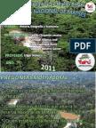 Reserva Nacional de Matsés