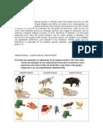 carnivoros hervivoros omnivoros.doc