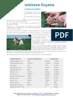 Por Qué Alimentar Con Pellests de Alfalfa