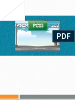 PCEI Report 2010 Final Email-Web Version