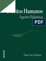 Livro Carbonari Dh Sugestoes Pedagogicas