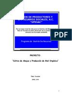 Proyecto Miel Sagarpa