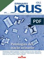 Veterinary Focus Patologia Tracto Urinario