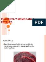 Placenta y Membranas Fetales