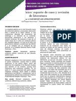 02. SD. PILORICO.docx