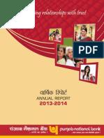 Pnb Annual Report 201314