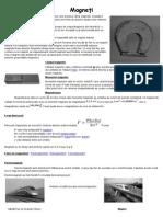 Proiect Fizica Magneti