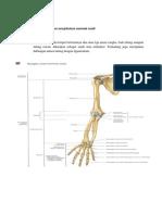 141678520 Arthritis Gout