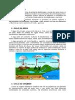 Ciclos Biogoquímicos