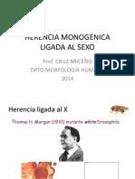 HERENCIA LIGADA AL SEXO.pptx