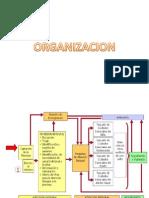 Organización Mais