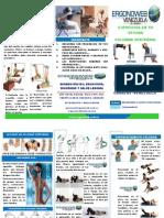 EJERCICIOS_COLUMNA VERTEBRAL.pdf