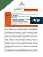 Ciencias Contabeis - Comportamento Organizacional - Cco1 Comportamento Organizacional Aula 3 Tema 3