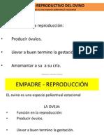Clase 3,4 2013 - i Clasificación Reproduc.