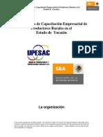 Tema 1 La Organizacion