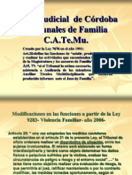 97231505 Power Point Catemu