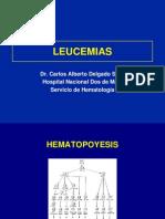 (24)  Leucemias 2004