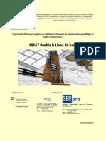 Estudio de Mercado Puebla-serpro