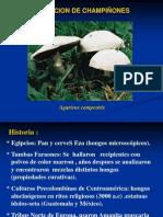 167021523-CHAMPINONES.pdf