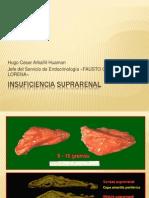 INSUFICIENCIA SUPRARENALFISIOP14