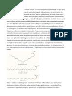 223611411 Aula Lipidios e Proteinas
