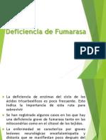 Caso 4 Deficiencia de Fumarasa