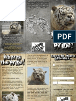 2009 White Tiger Brochure