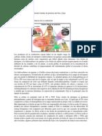 Control de Emisiones en Diferentes Fuentes de Potencia Móviles y Fijas