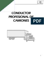 Manual - Conductor Profesional de Camiones