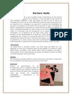 Danzas de Los Departamentos Del Peru