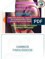 Fisiologia Neonatal