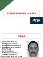 Tema 08-Exploracion de La Cara