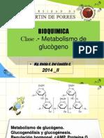 BQ 14 CH Metabolismo de Glucógeno