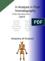 Chromatography Presentation (1)