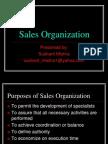 14474951-sales-organization-110629105224-phpapp01