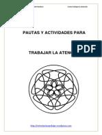 Orientacion Andujar Pautas y Actividades Para Trabajar La Atencic3b3n