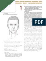 ST-4.pdf